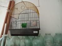 Клетку для попугая. Цена 100 руб.