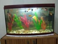 Продам аквариум на 100 лит