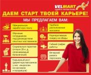 Работа в VELMART
