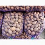 Продам семенной картофель Агата первая репродукция и сорт Гала