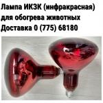 Лампа инфракрасная ИКЗК (250 Вт,  цоколь Е27)